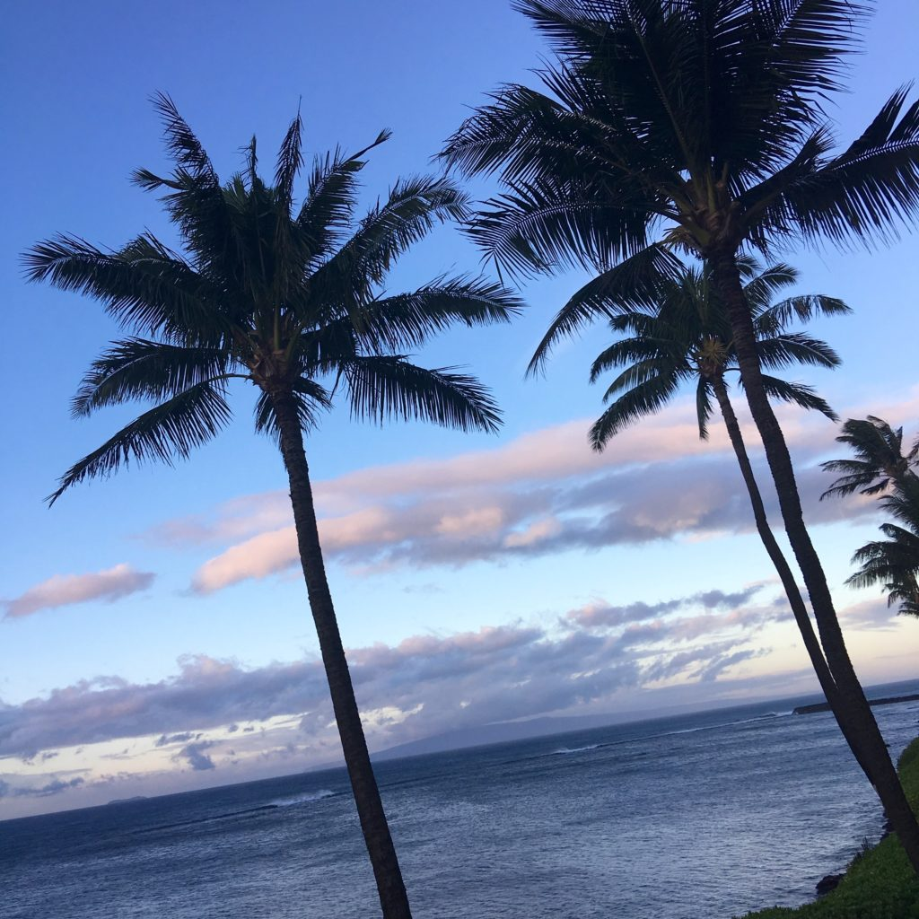 What to see and do in Maui